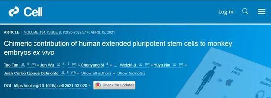 Cell重磅中美科学家人猴杂交胚胎最新突破存活将近20天