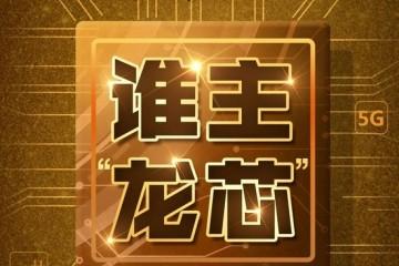 一个龙芯两家用龙芯中科VS神州龙芯谁拥有第一颗中国芯知识产权